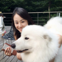 kayo_kanezawa_thumb