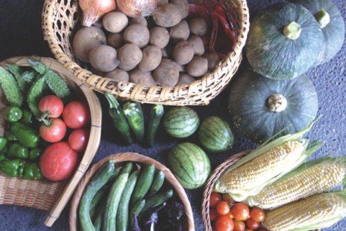 野菜 (002)