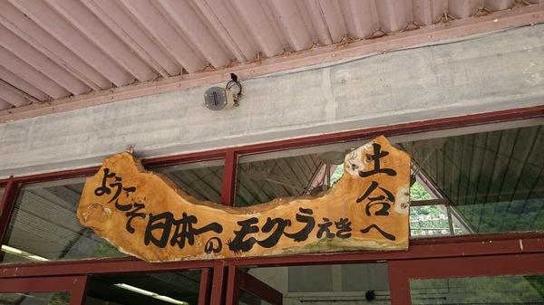 DSC_3775.JPG